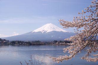 Lake_Kawaguchiko_Sakura_Mount_Fuji_4